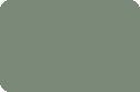 Paleeucalypt